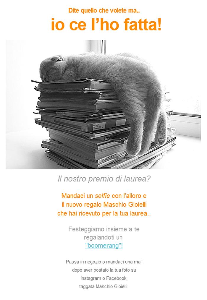 Newsletter_Il Laureato