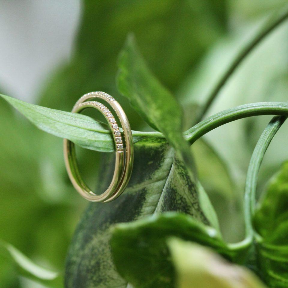 Nowhere. Ring
